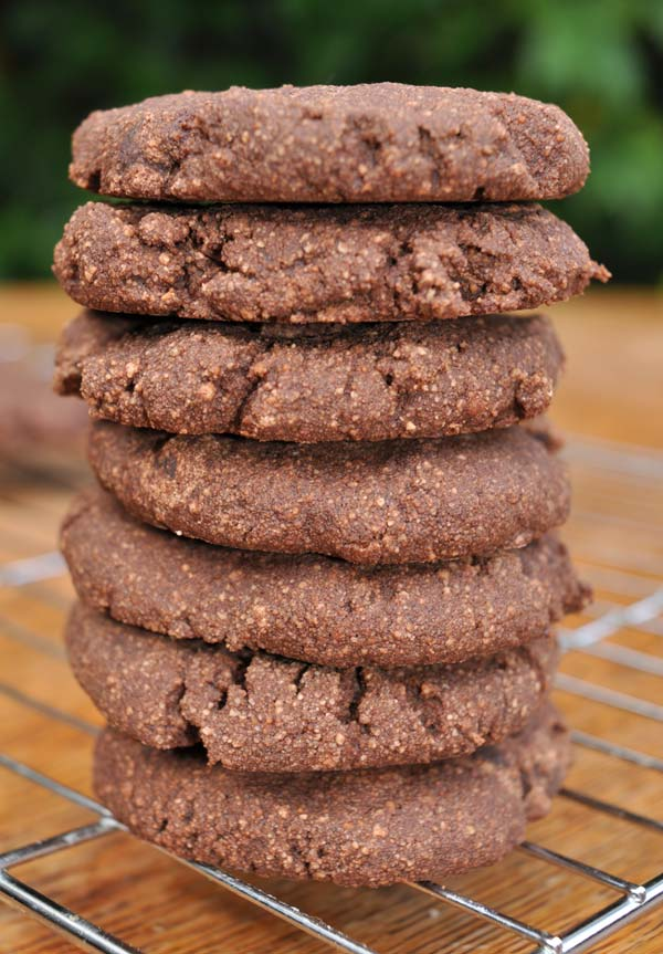 Christmas-Double-Chocolate-Cookies-in-a-Jar-0007
