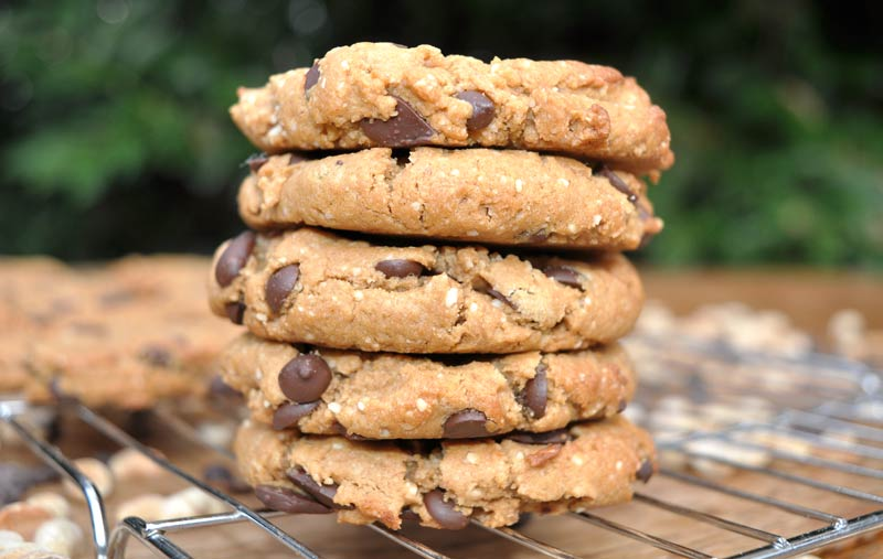 Flourless-Chocolate-Chip-Cookies-0006