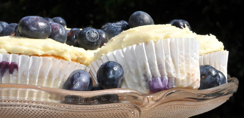 Lemon and Blueberry Cupcakes 0006