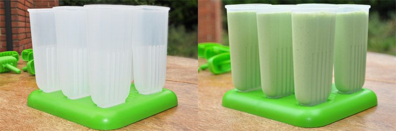 Lemon-and-Lime-Smoothie-Lolly-Moulds